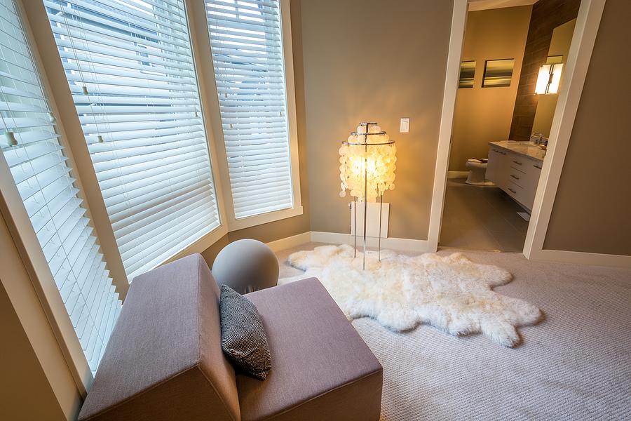Sheepskin rug in the room